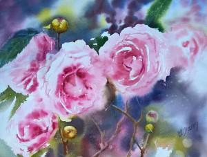 Les camélias roses